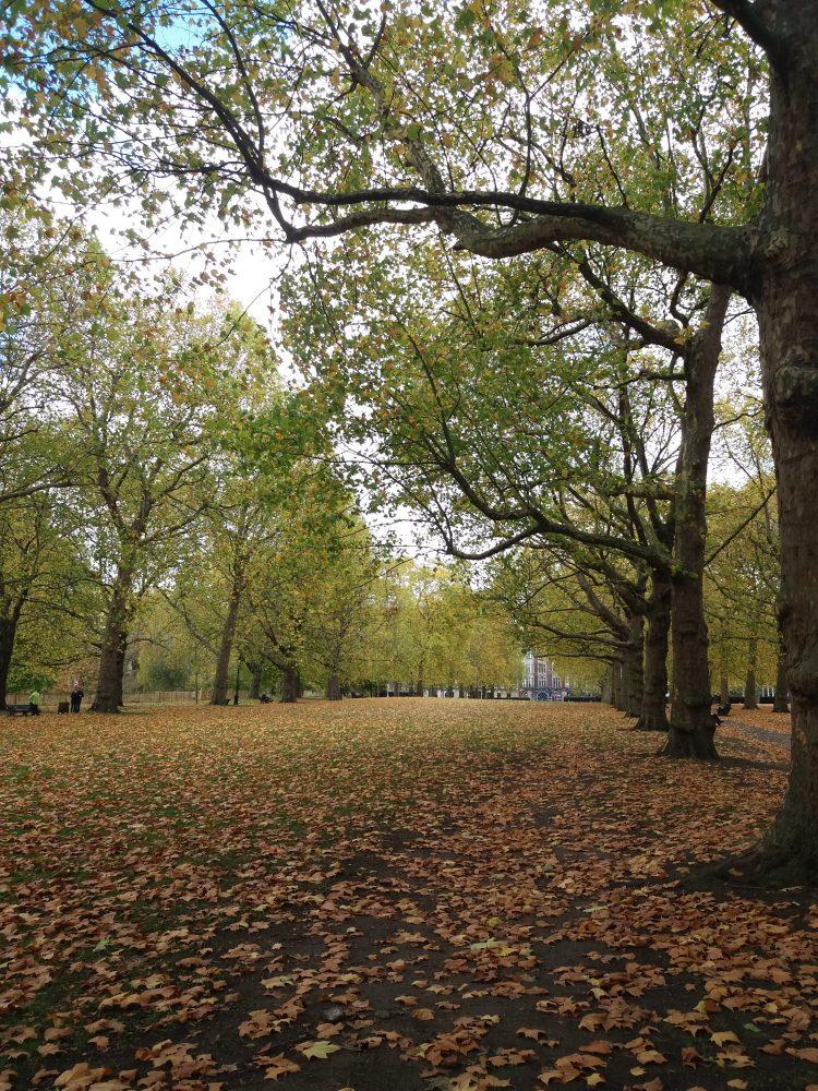 Parken in Londen