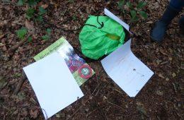 Review 'Op stap met de bosjuf'. Natuur educatie voor peuters en kleuters