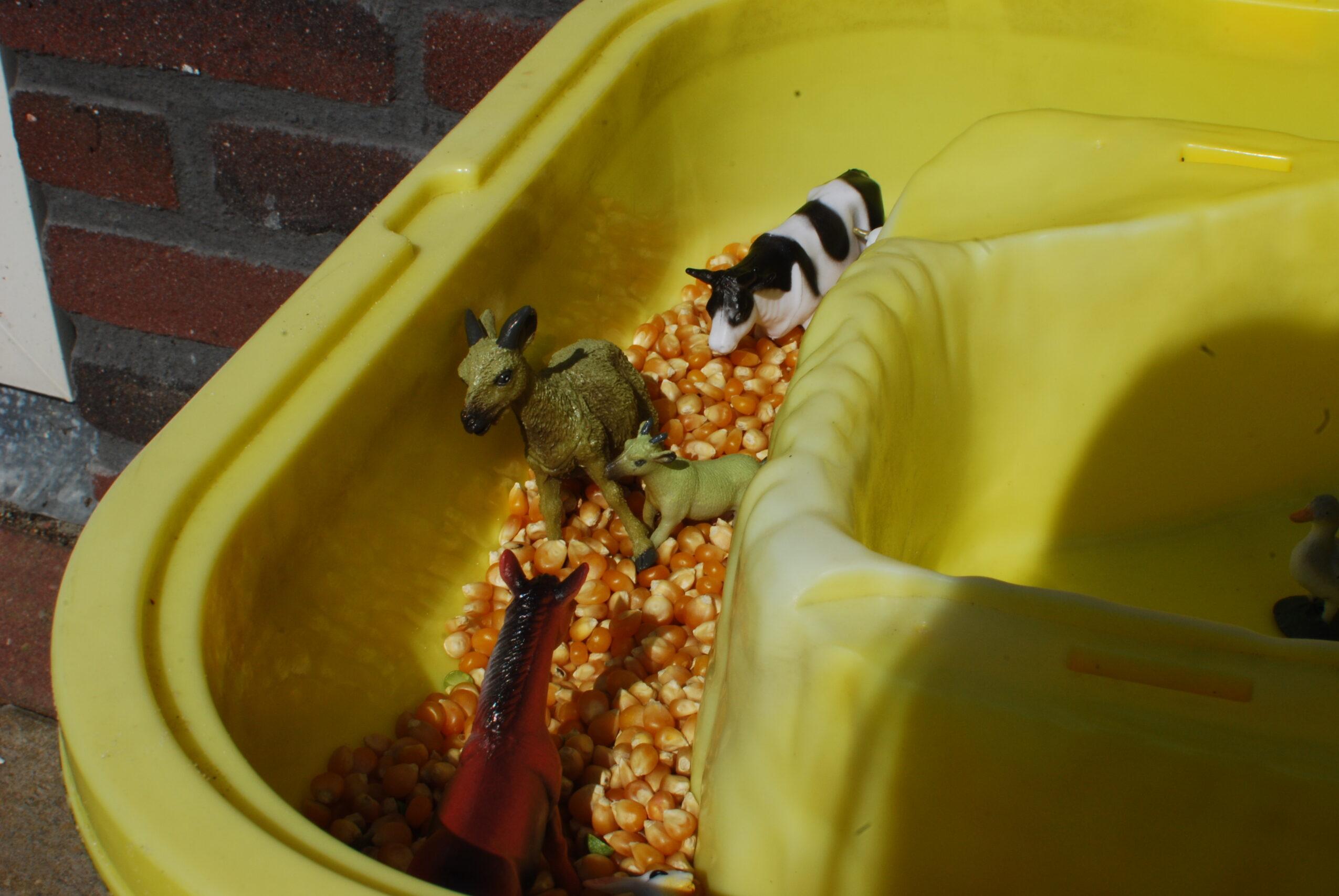 Dieren in mais