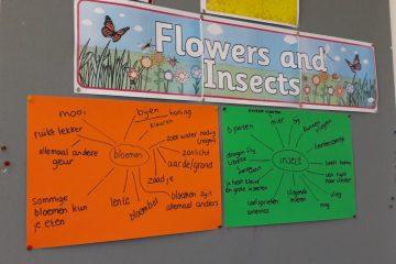 IPC startweek: bloemen en insecten