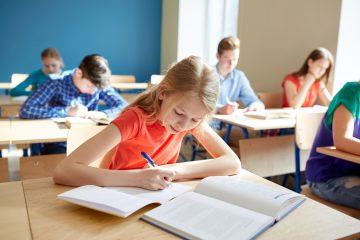 Curriculum.nu: wat is het en wat doen ze?