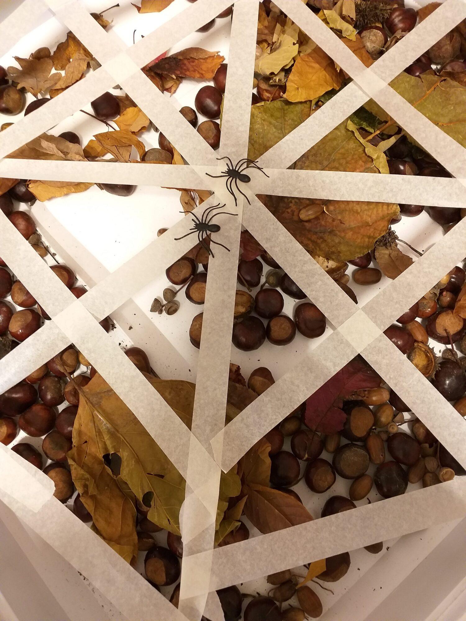 Ontdekbak herfstactiviteiten voor peuters