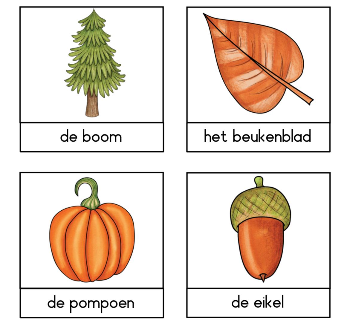 Herfst woordenschat