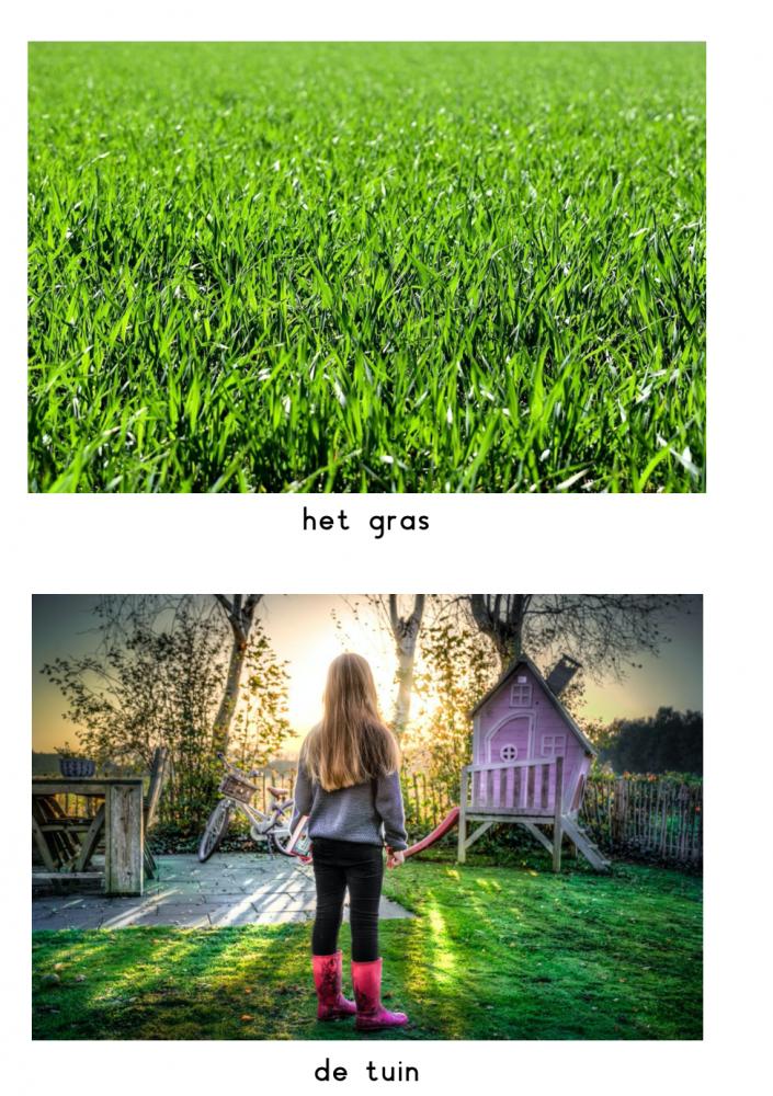 Woordkaarten vakantie in de tuin