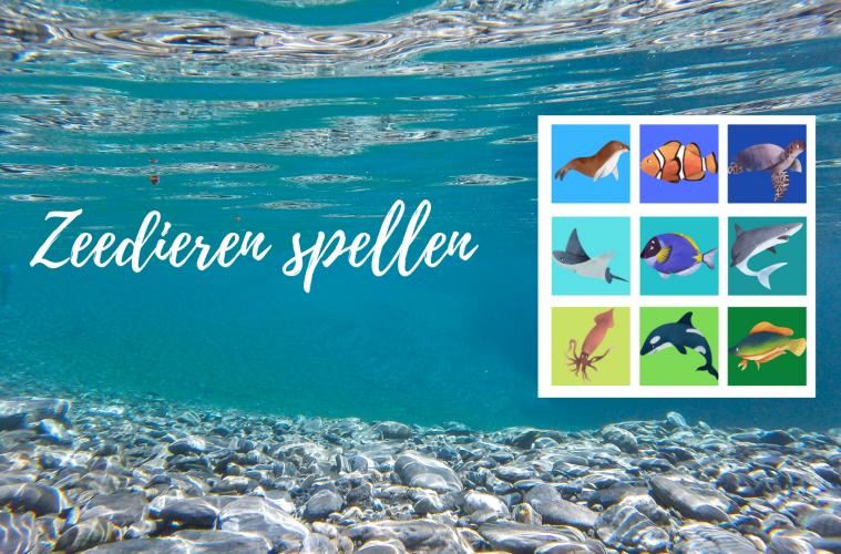 Zeedieren spellen