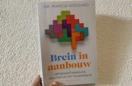 Brein in aanbouw, WIN