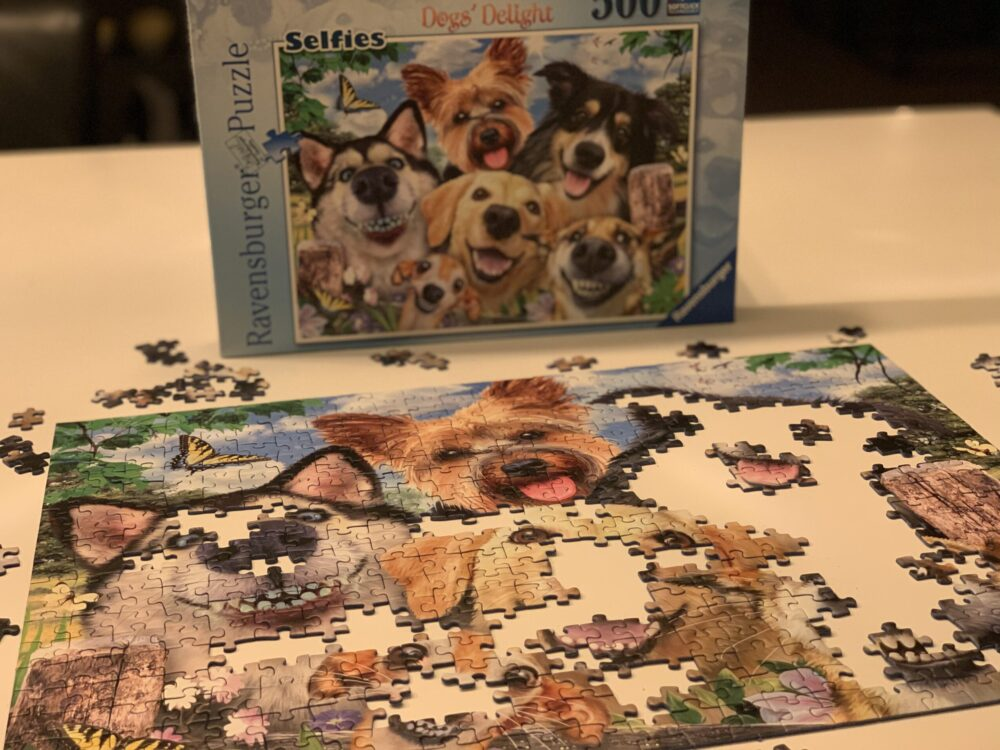 Vrolijke honden